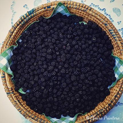 Un grande cesto di more - Foto di Chiara Privitera